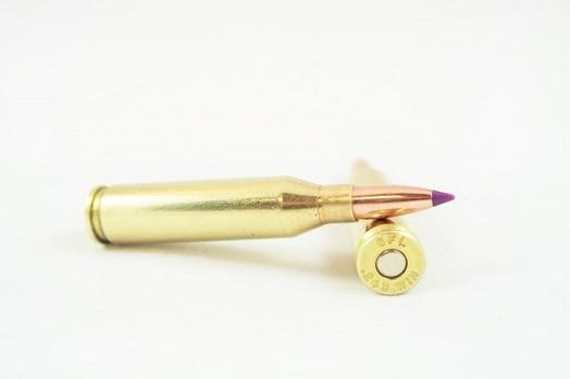 95 grain Nosler Ballistic Tip 20 round box | Modern Arms International